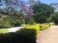Convent gardens