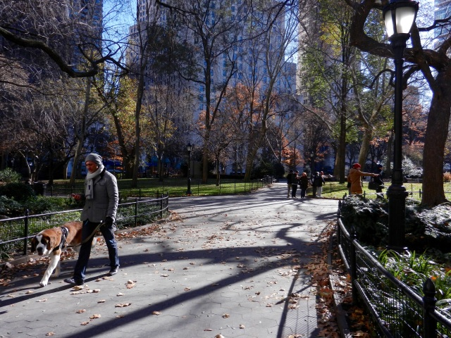 Shadows over NY park