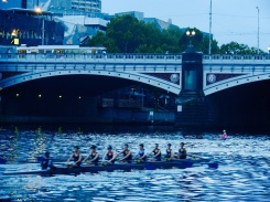 Rowing on the Yarra