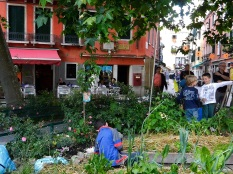 School children gardening in Venice