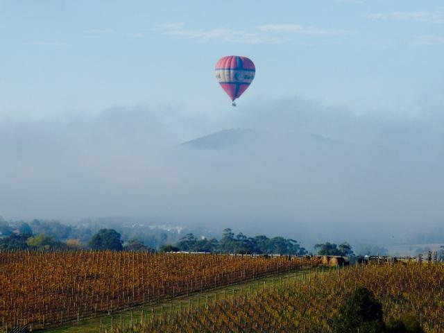 Balloon over Yarra Valley